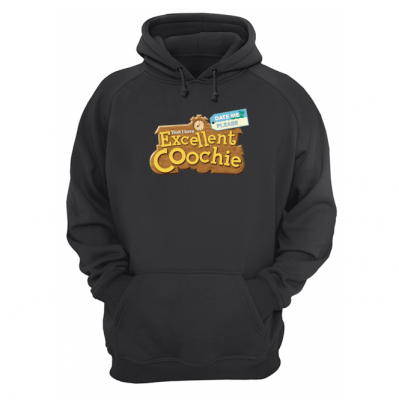 Excellent Coochie in Town Hoodie